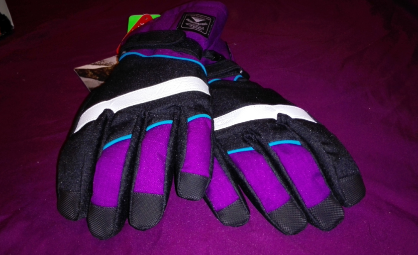 No Fear winter sports gloves