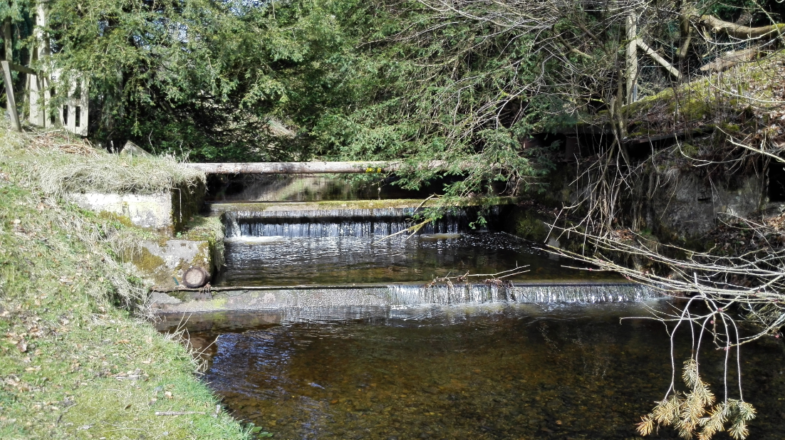 One of the many delightful waterfalls in the castle grounds.