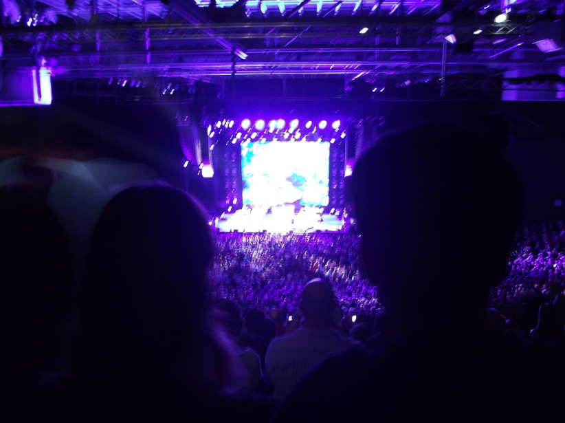 This is with no zoom.  Those heads are the two who went out of their way to cause nuisance.