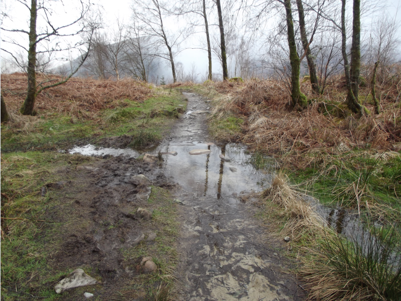 This was the footpath on the way back.