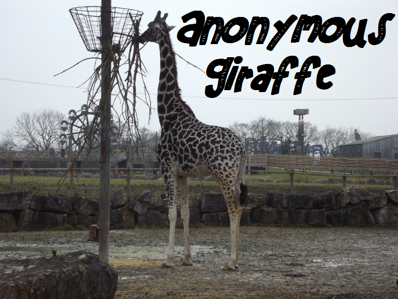 Because it's an anonymous giraffe... Anonymous giraffe are anonymous.