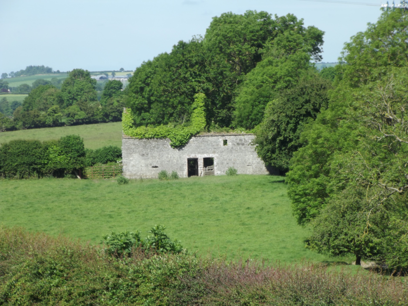 A tumbledown farmhouse near the site. I thought it was particularly beautiful.