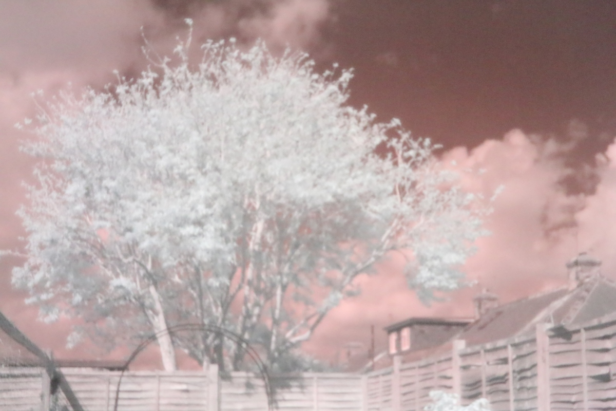 Infrared Photography in York: Can You Believe This is NOT Photoshopped?