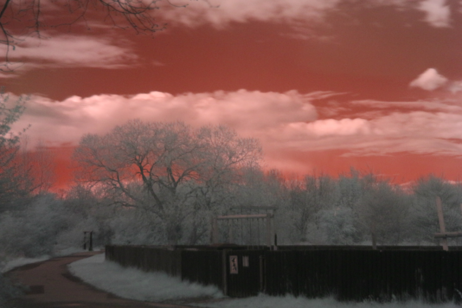 Infra red photography infrared