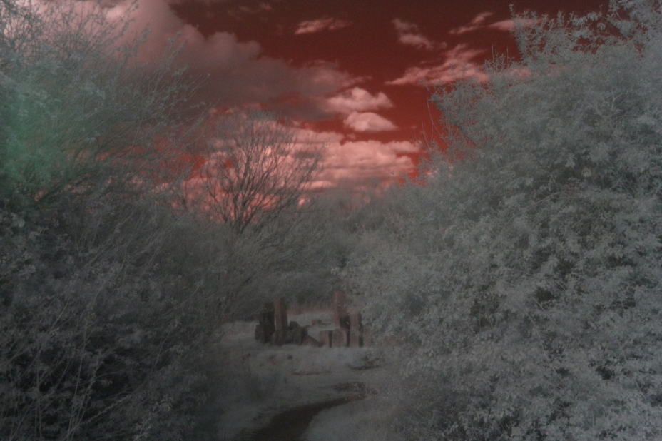 Infrared photography Infrared photography infra red photos
