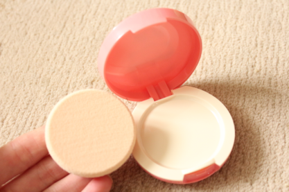 Sana Pore Putty Review