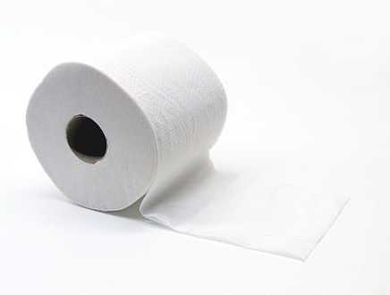 Alternatives to toilet paper and baby wipes.